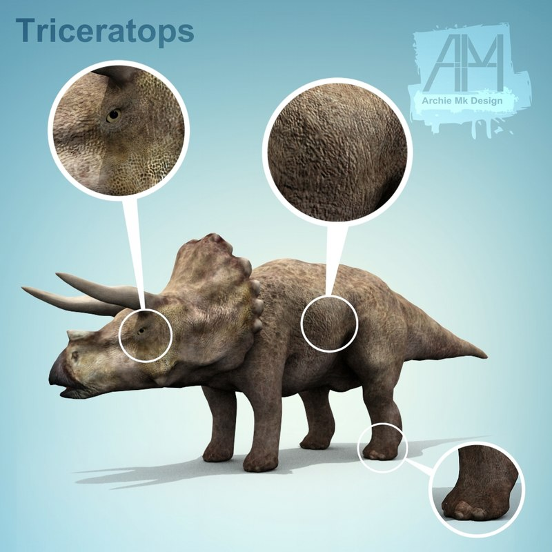 3d model dinosaurs dino