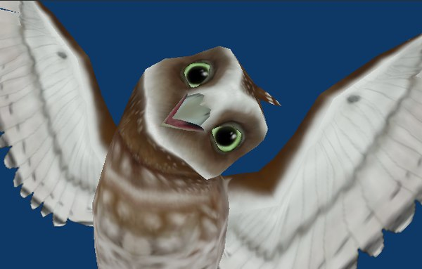 free burrowing owl 3d model