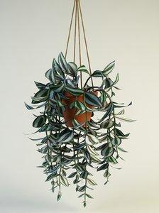 max plants pots