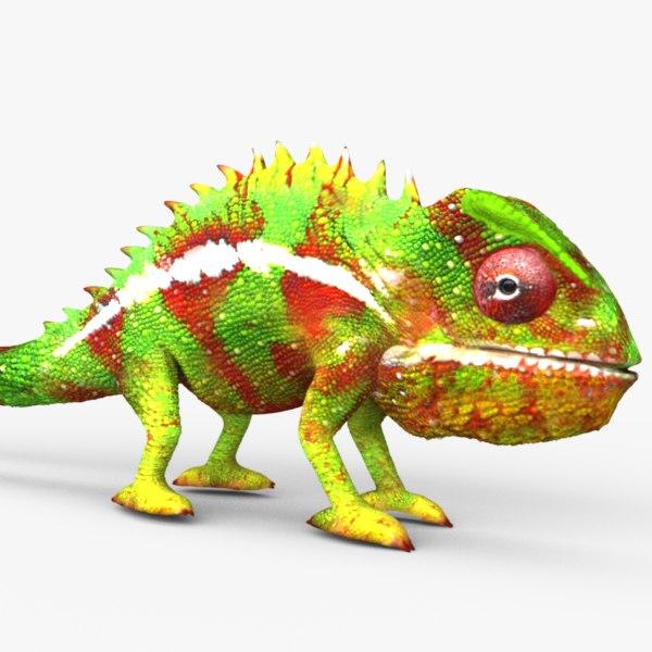 chameleon lizards 3d c4d