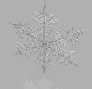3d snowflake snow flake model