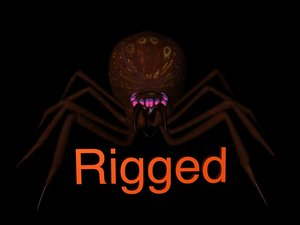 rigged spider 3d model