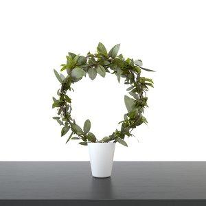 plants interiors 3d max