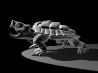 turtle max