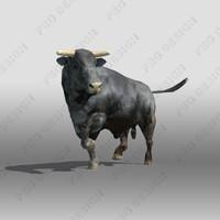 bull black red 3d model