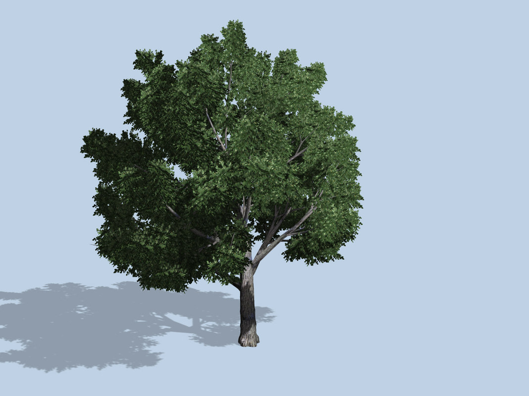 tree pack 3ds