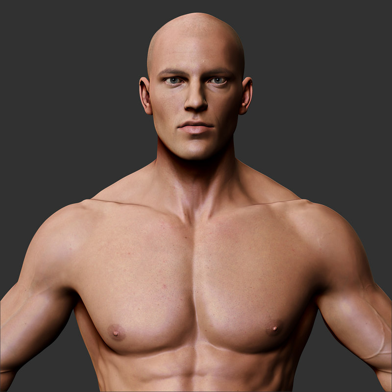 male body character max, Muscles