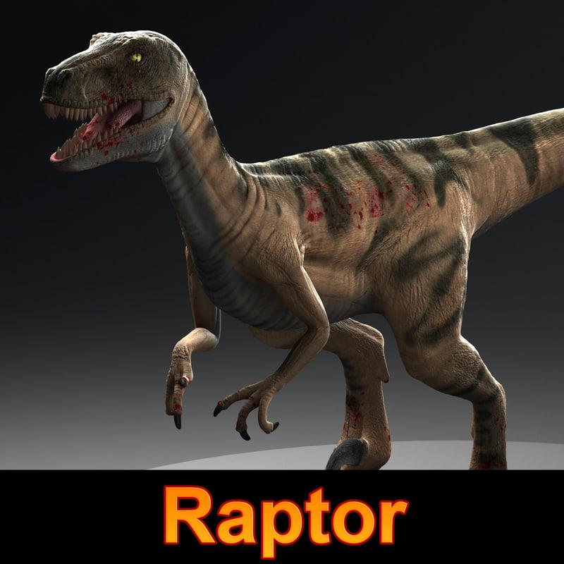 maya raptor