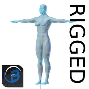 3d rigged base mesh muscular model