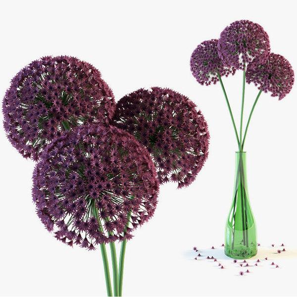 3d model of allium flowers vase