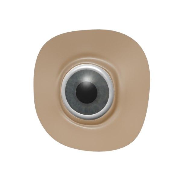 eye rigged 3d model