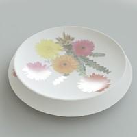plate 01 3d