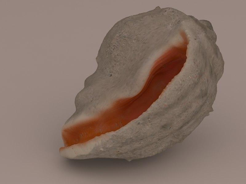 3d max seashell aquarium