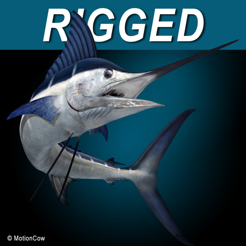 model of blue rigged