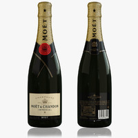 3d champagne model