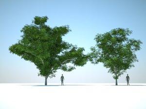 trees arch gpu 3d max