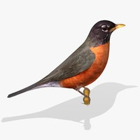 american robin ab 3ds
