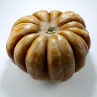 pumpkin obj