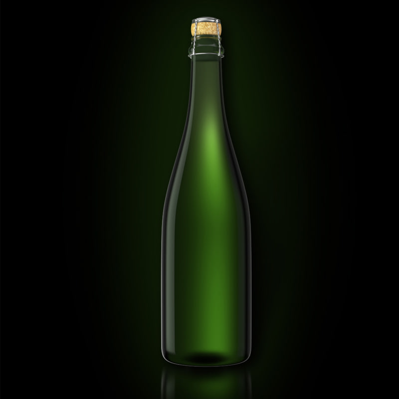 3d bottle champagne model