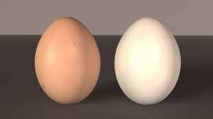 3d model eggs