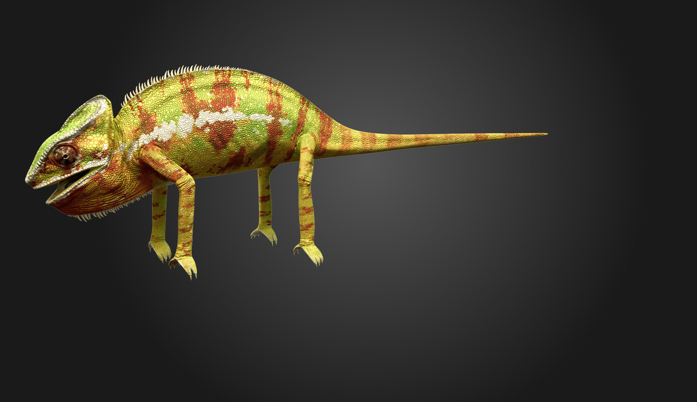 3d model chameleon tongue
