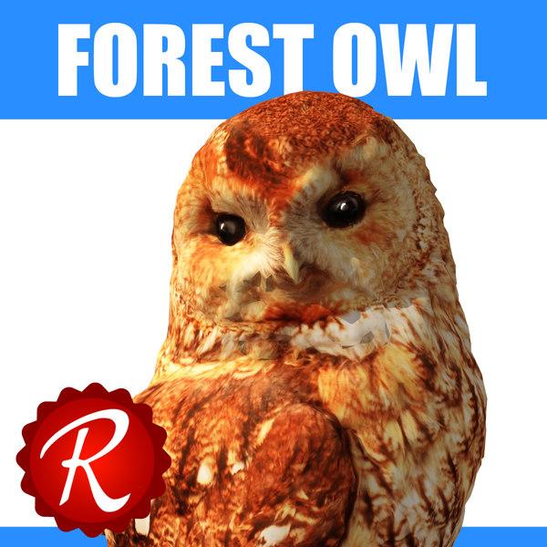 forest owl 3d model