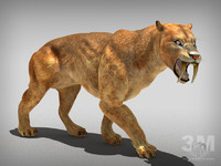 tiger lion extinct 3d max