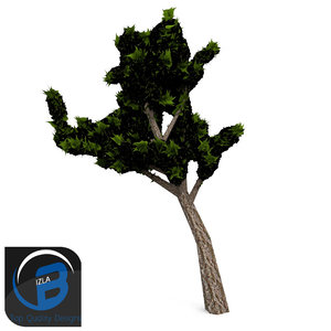 3d tree leaf