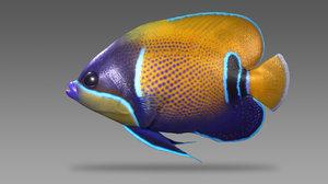 3d model saltwater fish majestic angelfish