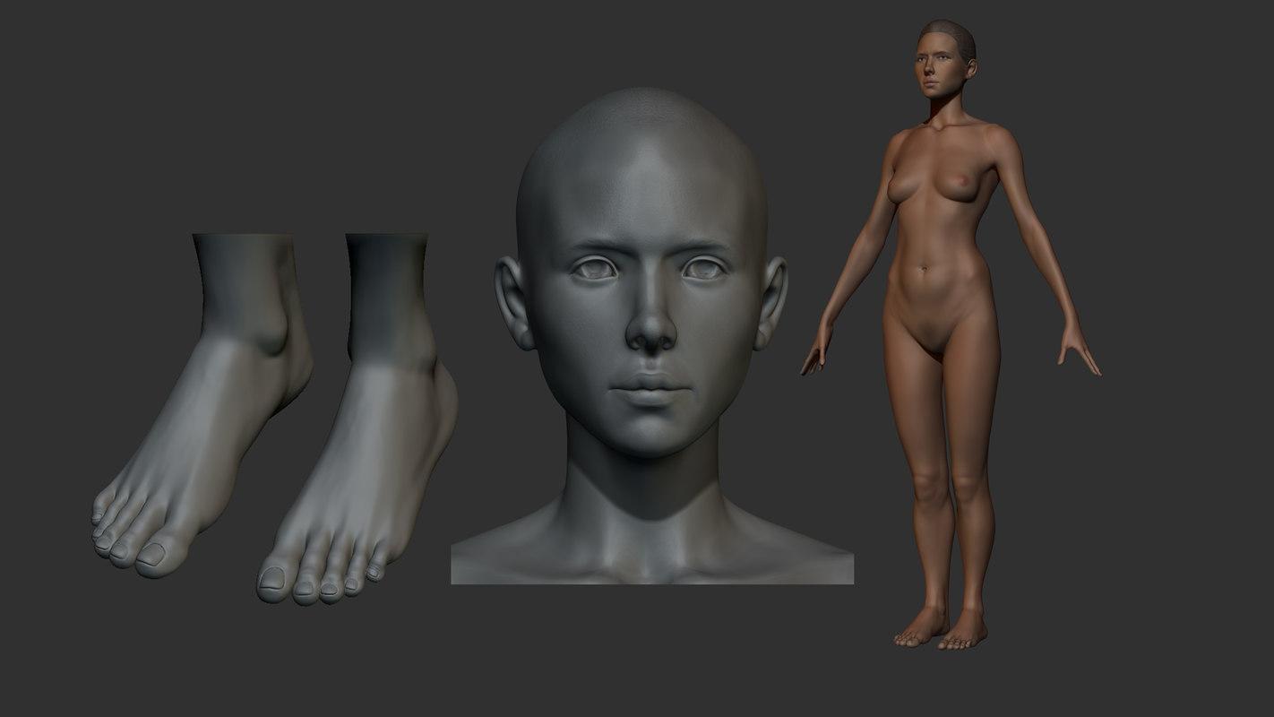 anatomy female 3d model