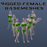 Female Basemesh Pack