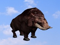 Low Poly Boar