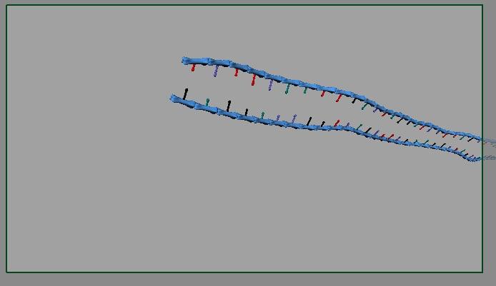 maya rigged dna helix