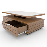 Coffee Table 04