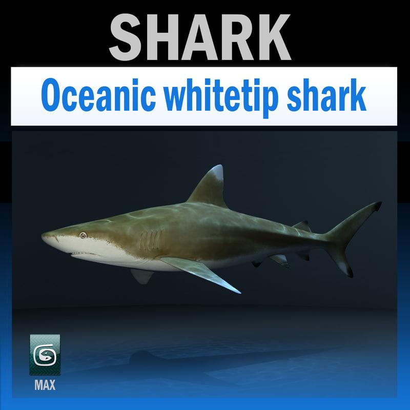 max oceanic shark