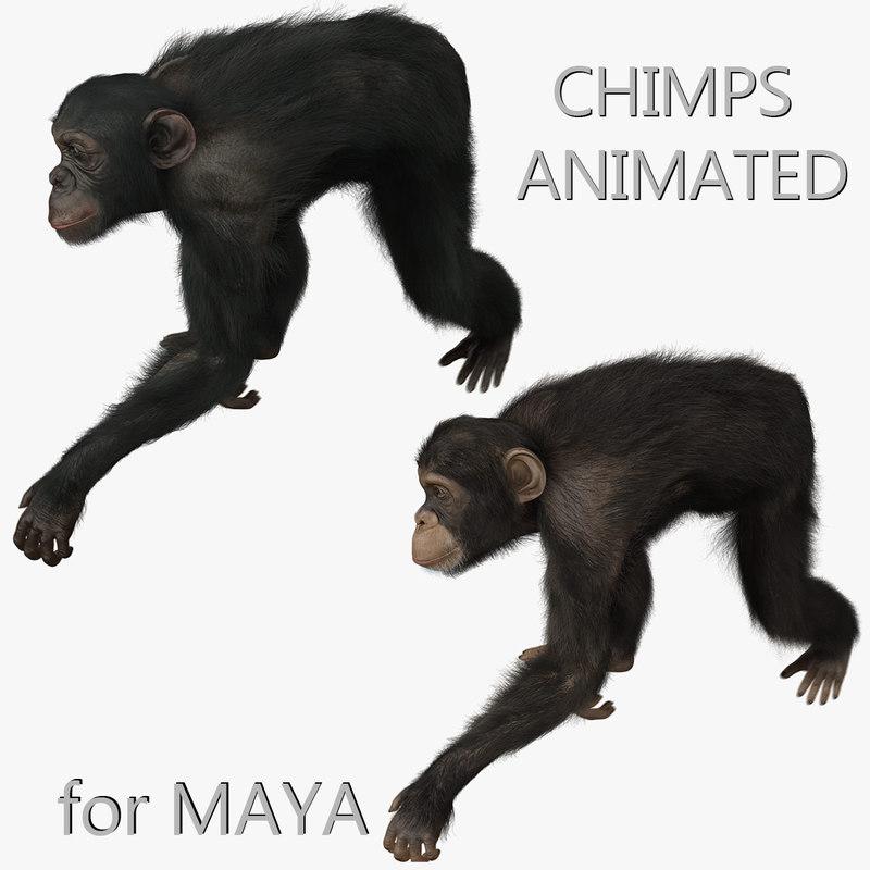 maya chimps fur animation