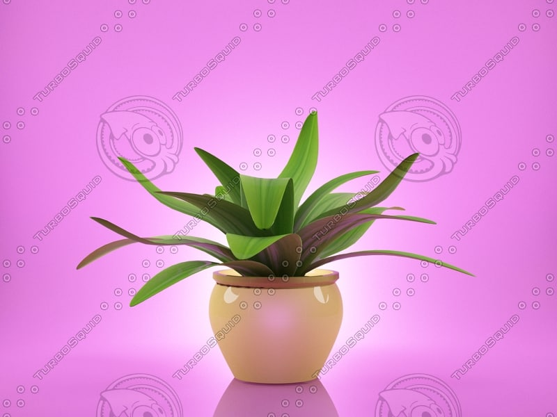 flower agave 3d max