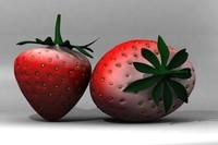 strawberry berries max