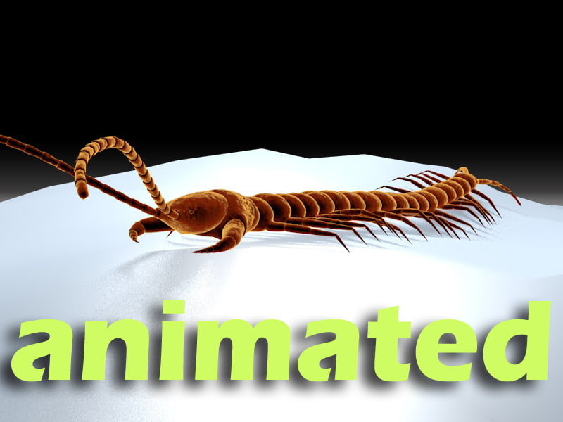3d centipede dynamic ik model