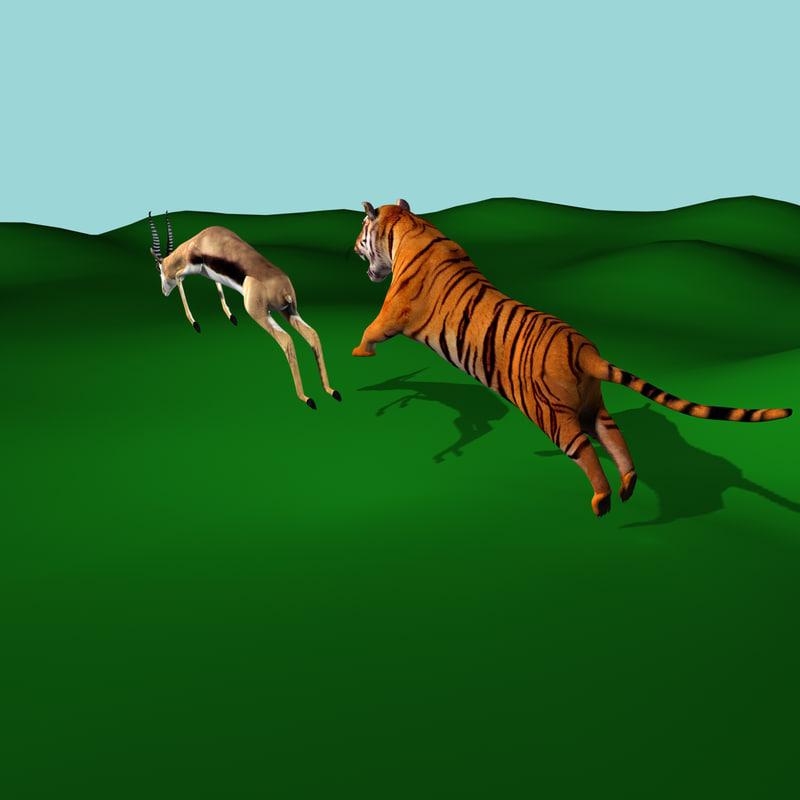 3d obj tiger deer