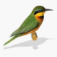 AB Little Bee Eater SA