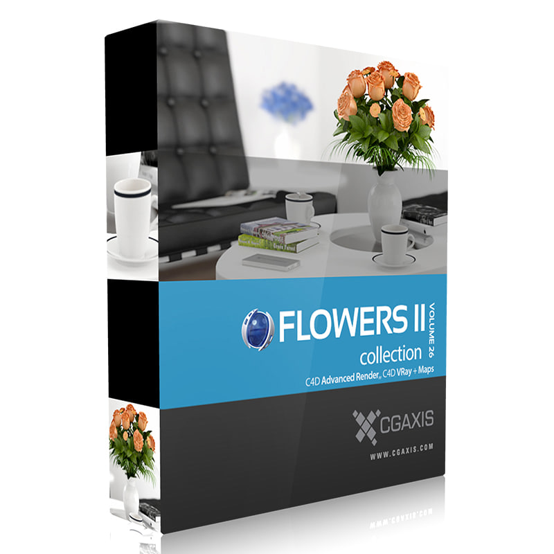 volume 26 flowers ii 3d model
