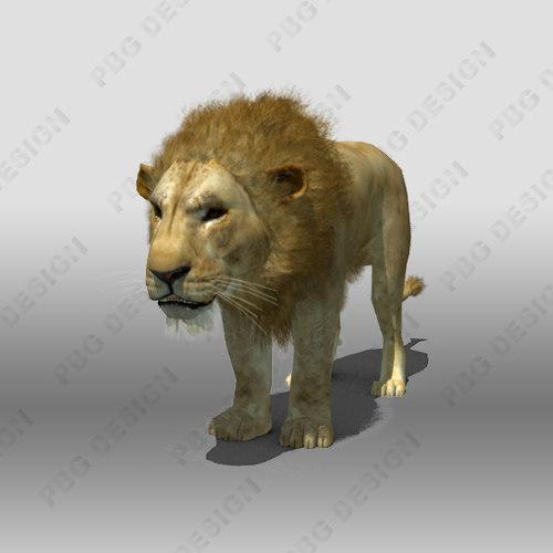 3d lion feline cat