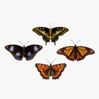 rative butterflys fg 3d model