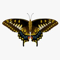 decorative butterfly fg 3d obj