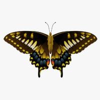 decorative butterfly fg 3d obj