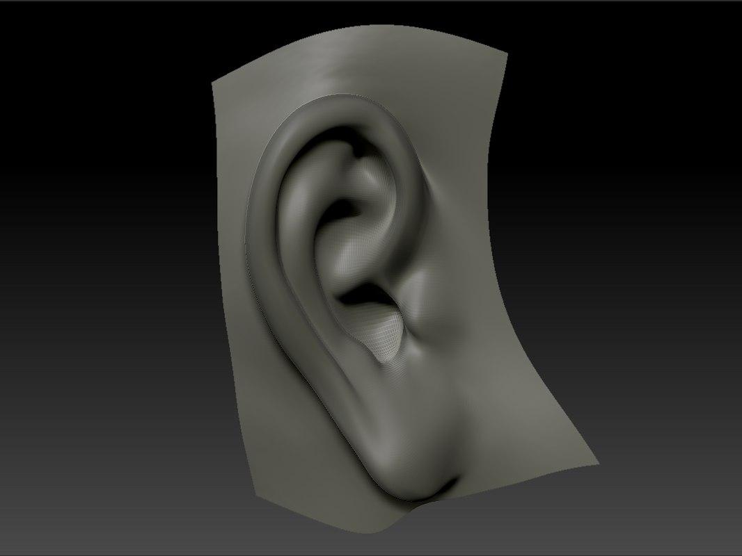 obj realistic human ear