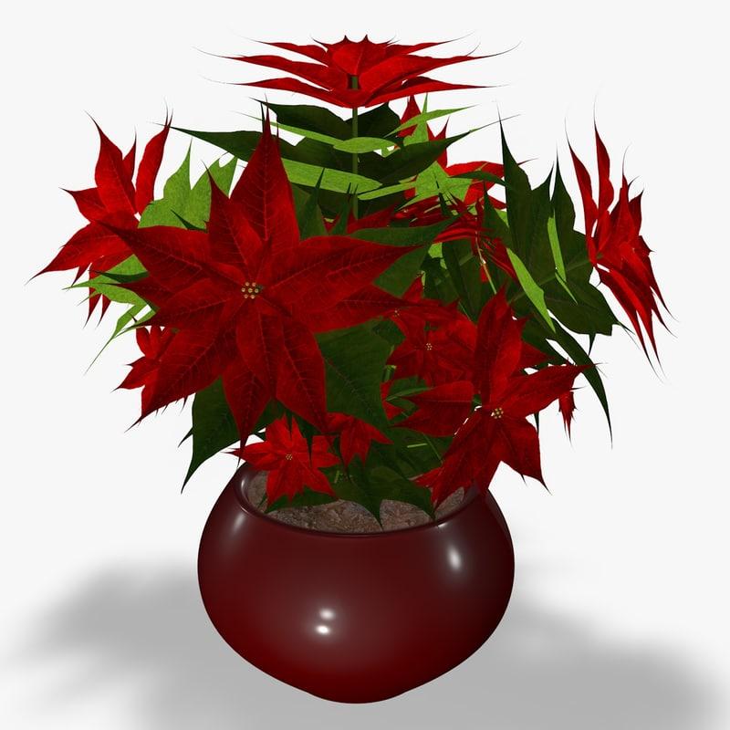poinsettia flower 3d model