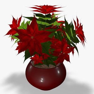 poinsettia flower 3d model