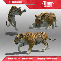 Tiger Animated